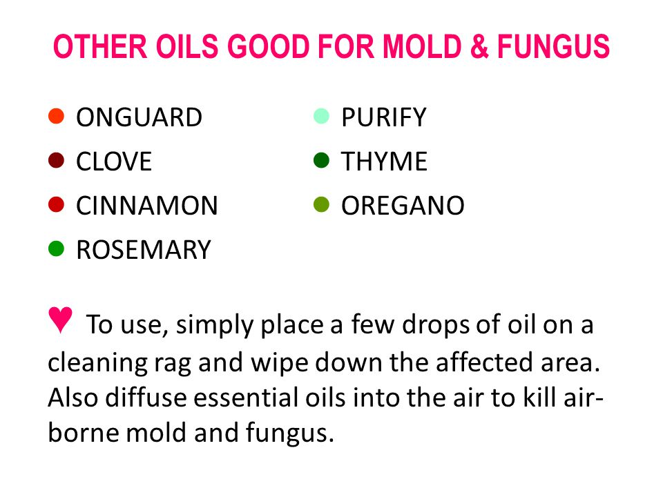 OTHER OILS GOOD FOR MOLD & FUNGUS