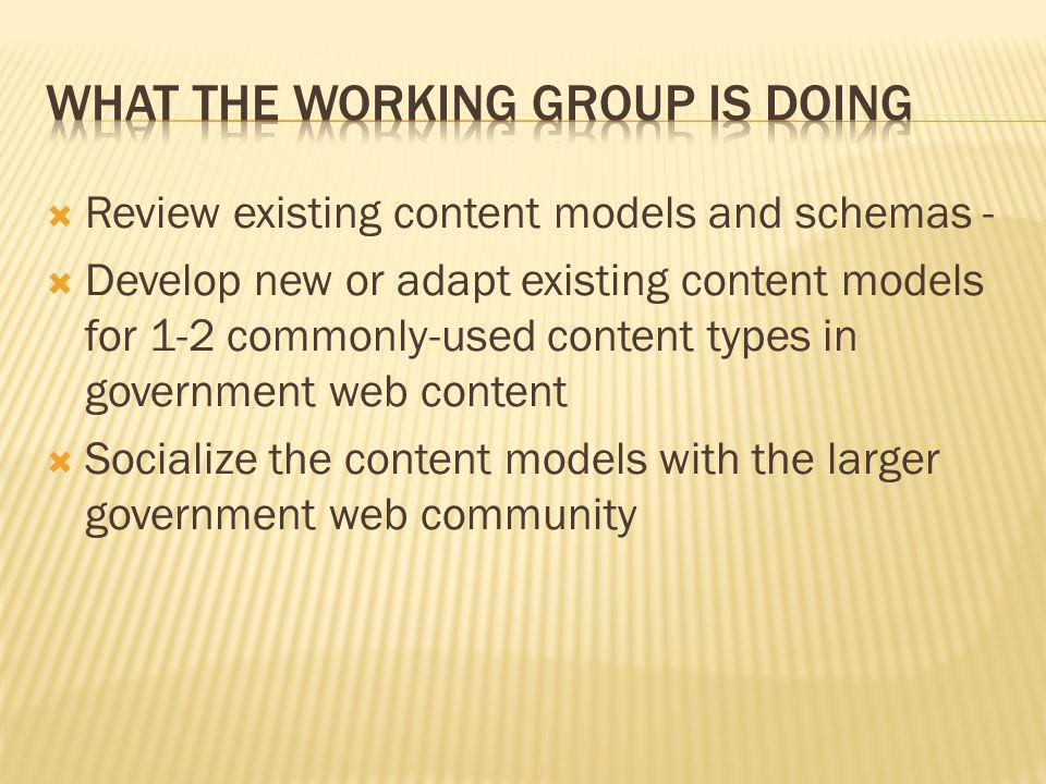 What the Working Group is doing