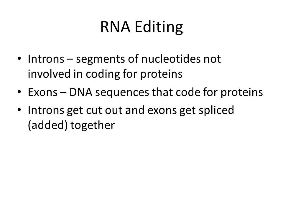 RNA Editing Introns – segments of nucleotides not involved in coding for proteins. Exons – DNA sequences that code for proteins.