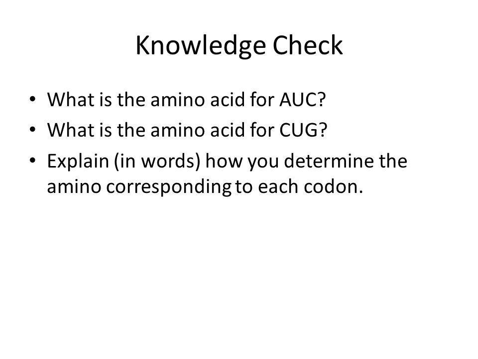 Knowledge Check What is the amino acid for AUC