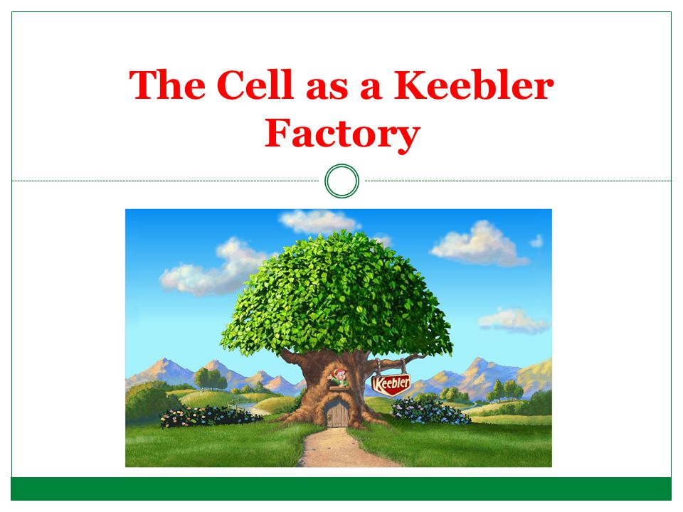 The Cell as a Keebler Factory