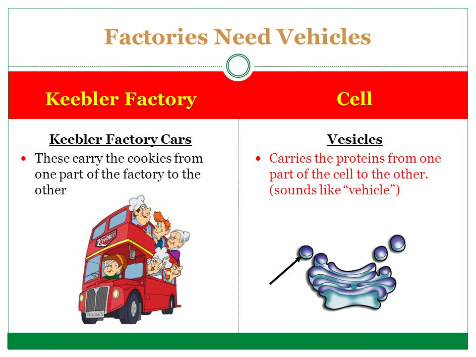 Factories Need Vehicles