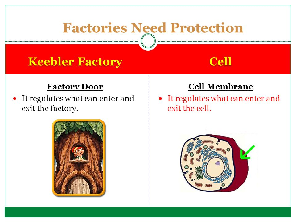 Factories Need Protection