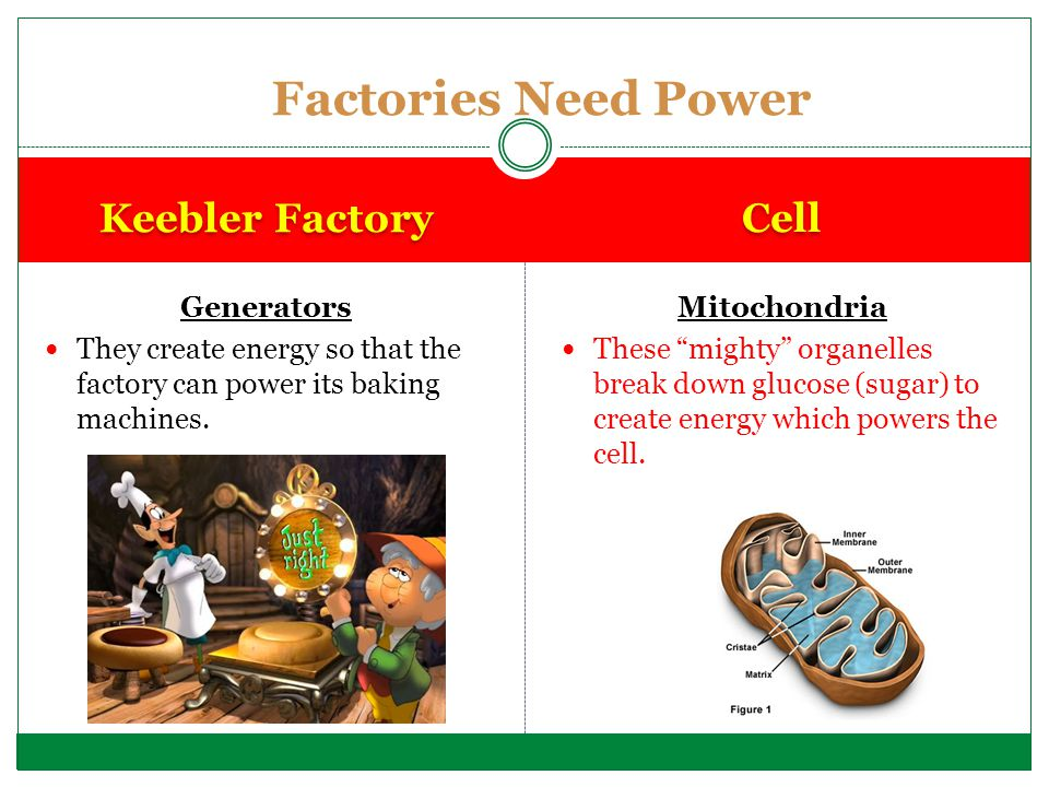 Factories Need Power Keebler Factory Cell Generators