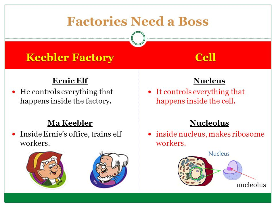Factories Need a Boss Keebler Factory Cell Ernie Elf