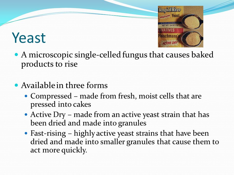 Yeast A microscopic single-celled fungus that causes baked products to rise. Available in three forms.