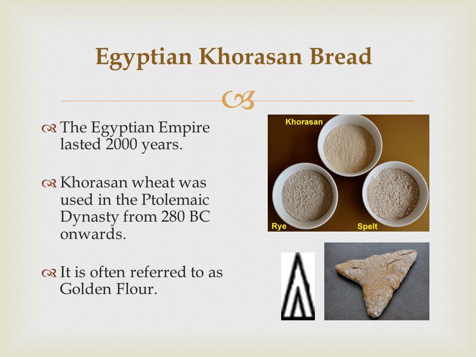 Egyptian Khorasan Bread