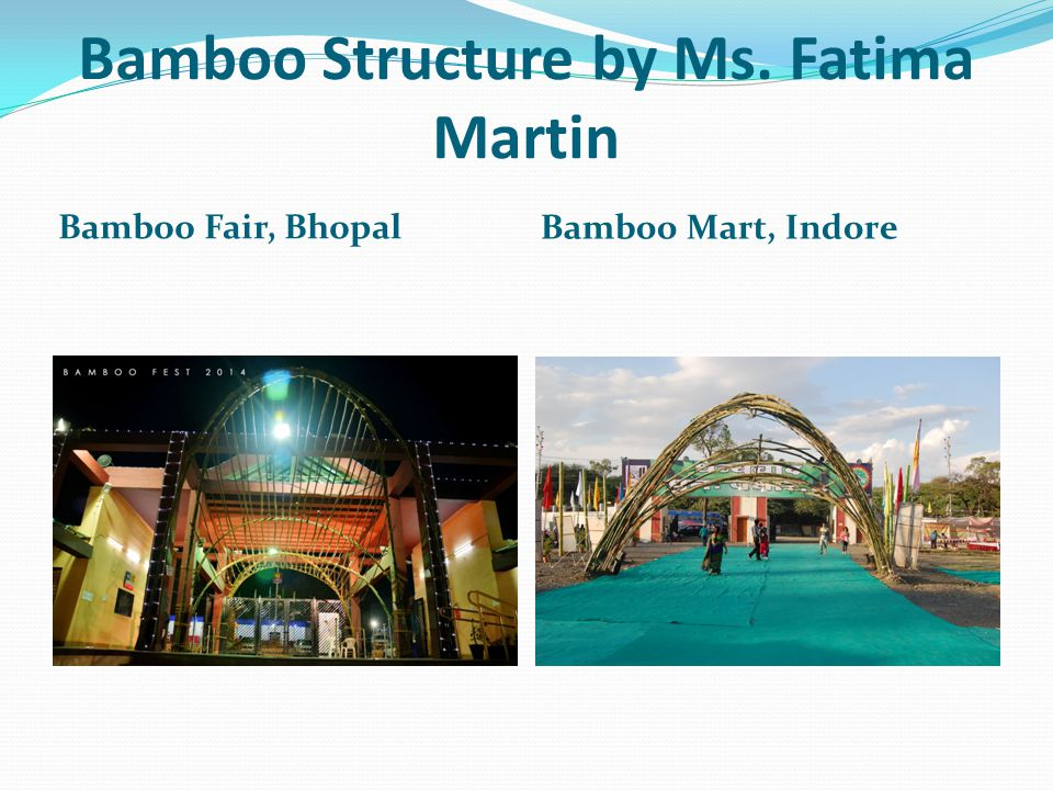 Bamboo Structure by Ms. Fatima Martin