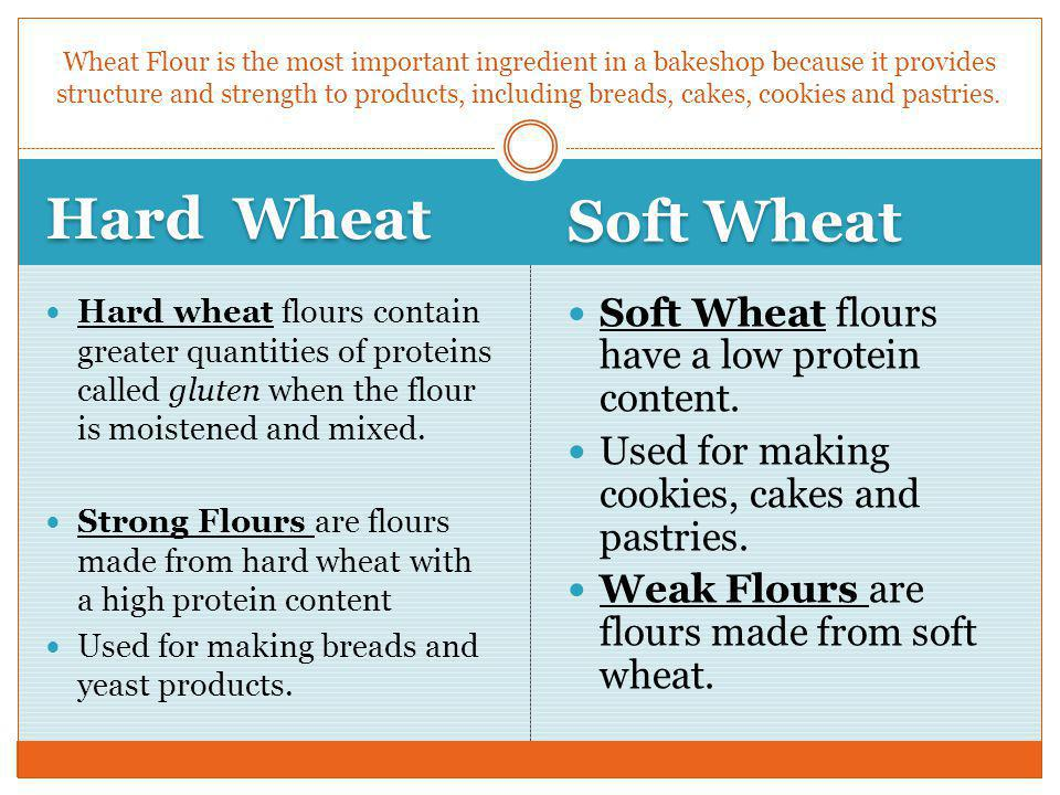 Hard Wheat Soft Wheat Soft Wheat flours have a low protein content.