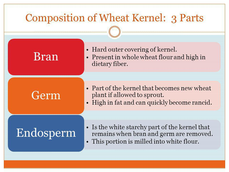 Composition of Wheat Kernel: 3 Parts