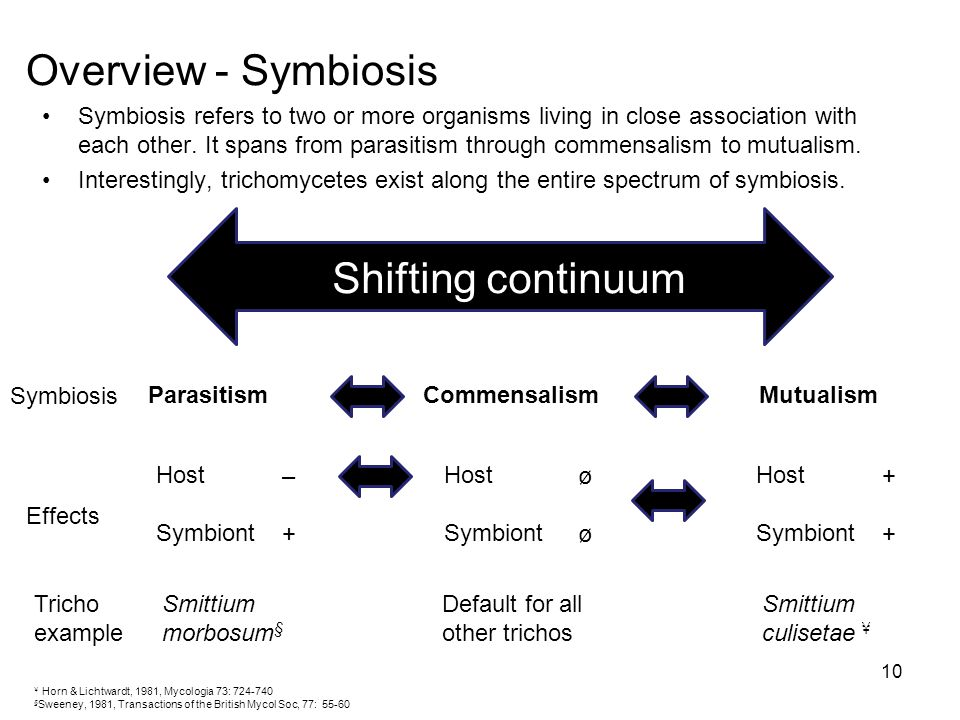 Overview - Symbiosis Shifting continuum