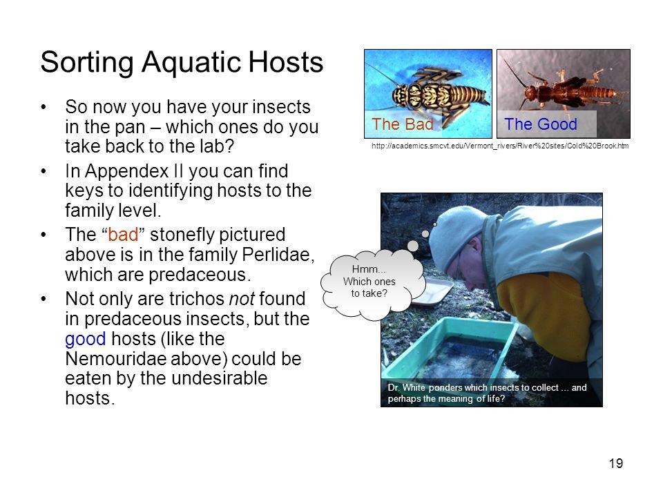 Sorting Aquatic Hosts The Good. The Bad. http://academics.smcvt.edu/Vermont_rivers/River%20sites/Cold%20Brook.htm.