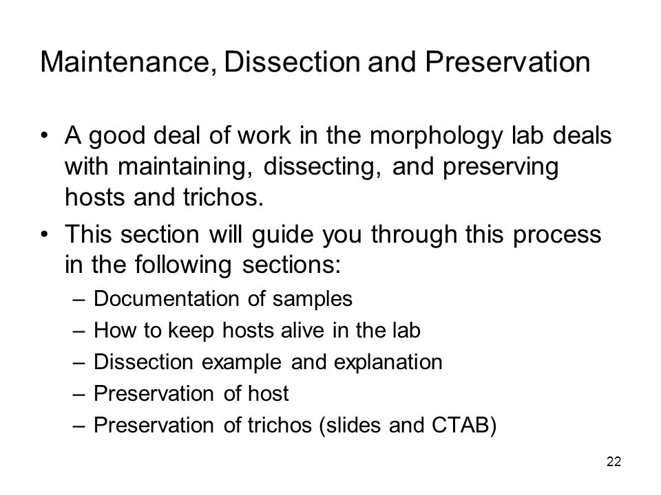 Maintenance, Dissection and Preservation