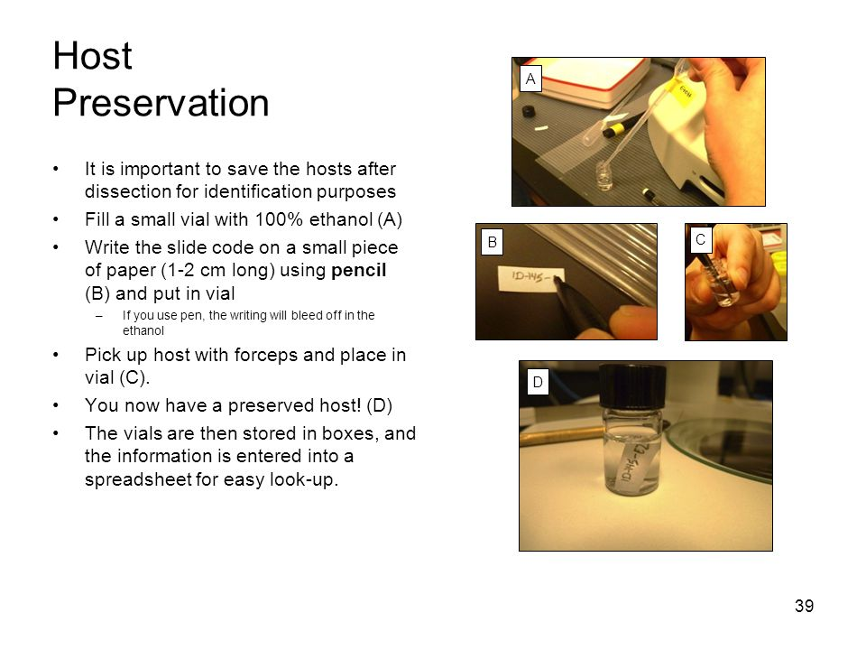 Host Preservation A. It is important to save the hosts after dissection for identification purposes.