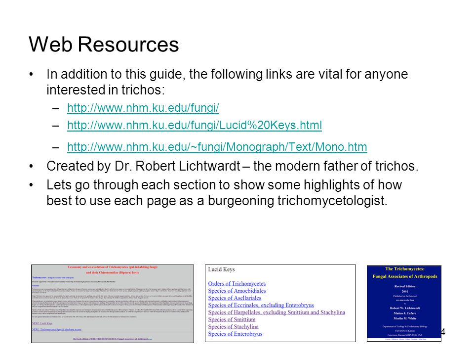 Web Resources In addition to this guide, the following links are vital for anyone interested in trichos: