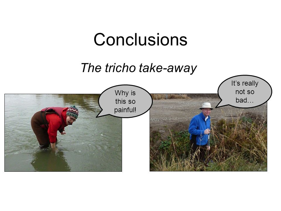 Conclusions The tricho take-away It's really not so bad…