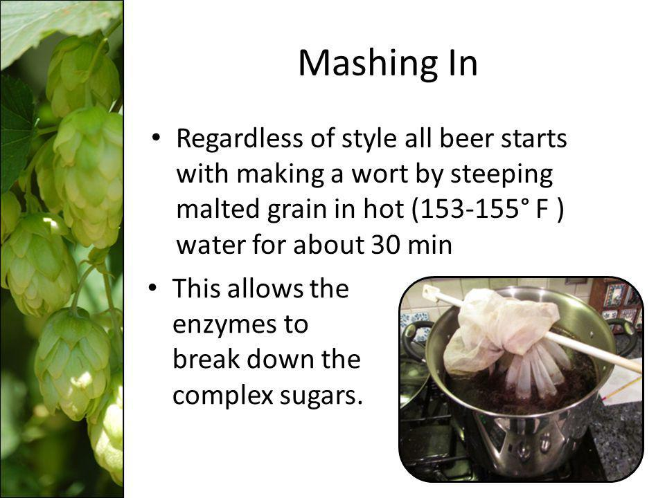 Mashing In Regardless of style all beer starts with making a wort by steeping malted grain in hot (153-155° F ) water for about 30 min.