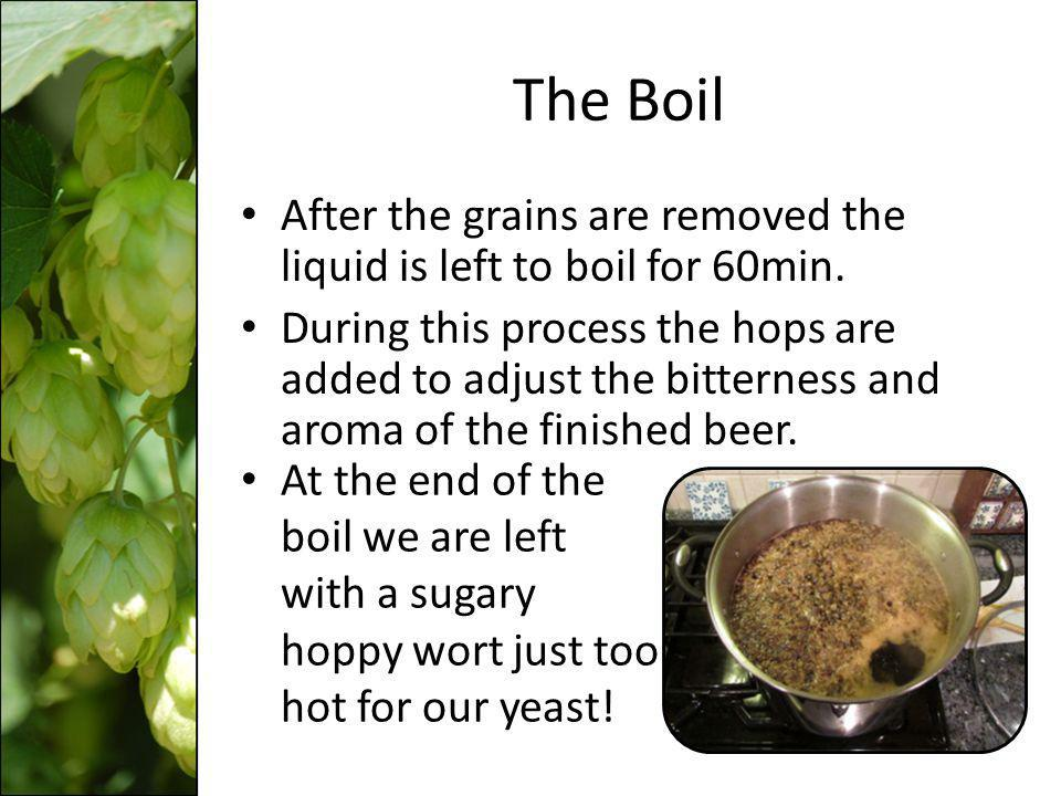 The Boil After the grains are removed the liquid is left to boil for 60min.