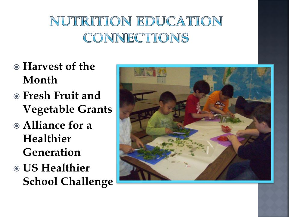 Nutrition Education Connections
