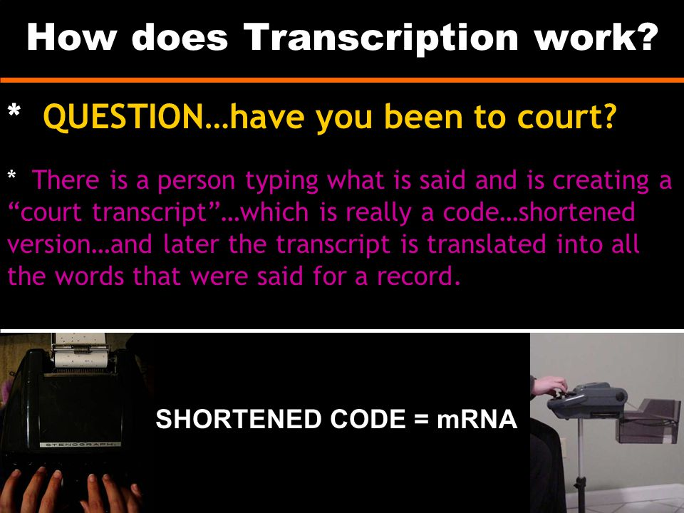 How does Transcription work