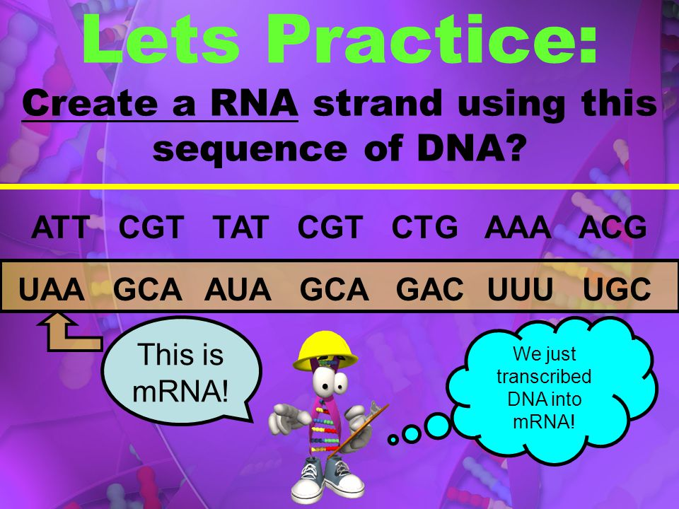 Lets Practice: Create a RNA strand using this sequence of DNA