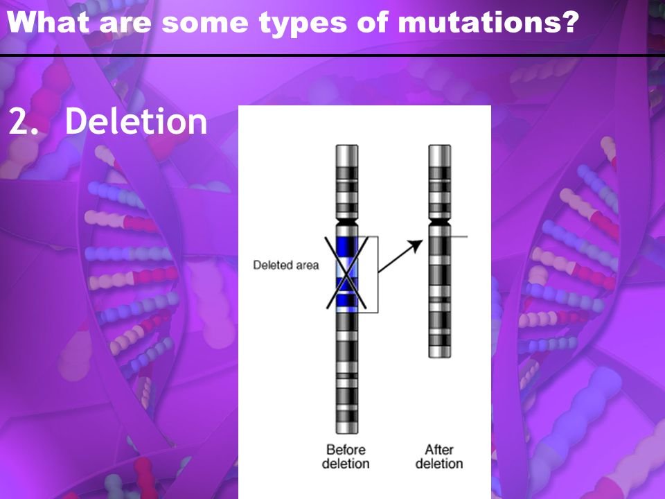 What are some types of mutations