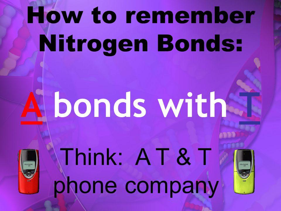 How to remember Nitrogen Bonds: