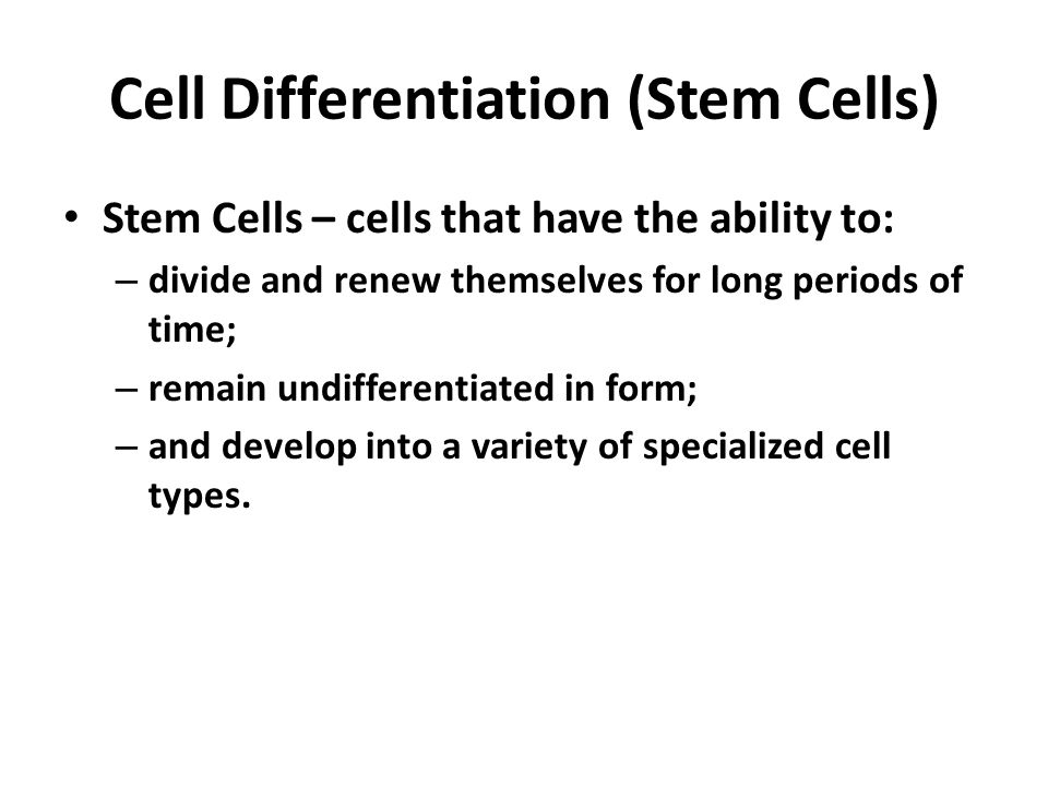 Cell Differentiation (Stem Cells)