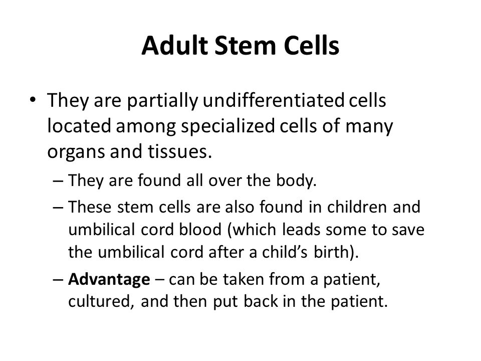 Adult Stem Cells They are partially undifferentiated cells located among specialized cells of many organs and tissues.
