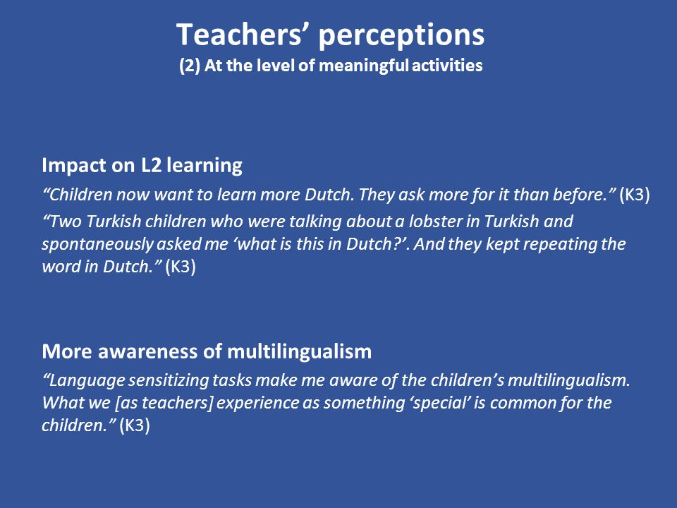 Teachers' perceptions (2) At the level of meaningful activities