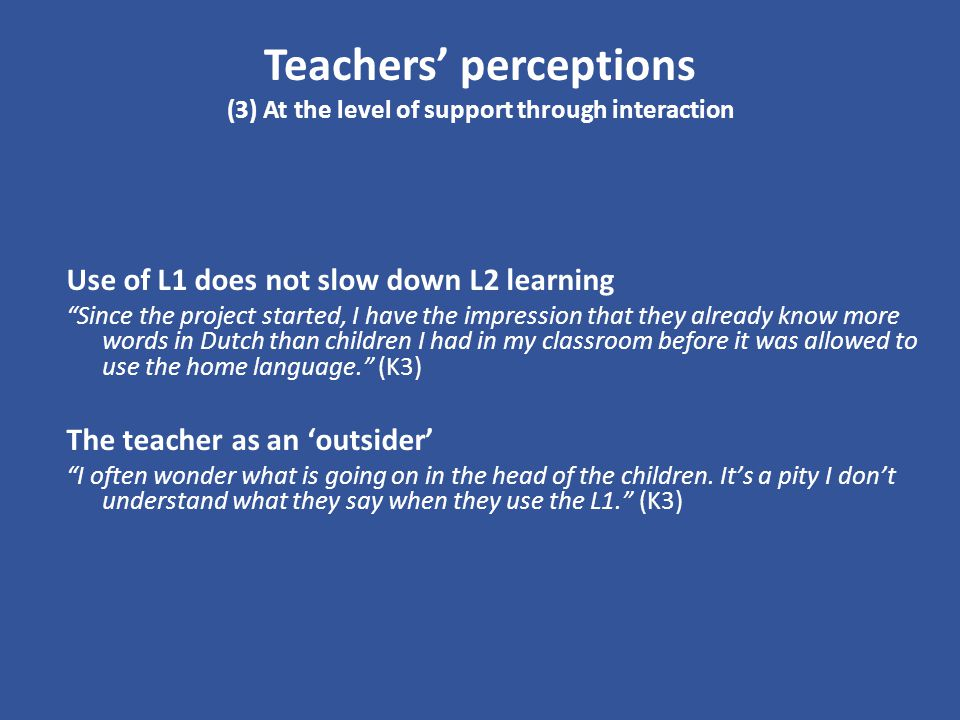 Teachers' perceptions (3) At the level of support through interaction