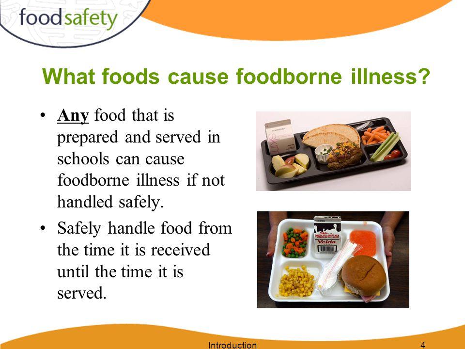 What foods cause foodborne illness