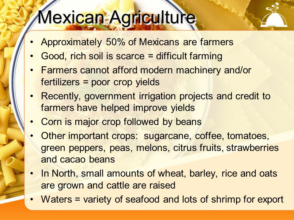 Mexican Agriculture Approximately 50% of Mexicans are farmers