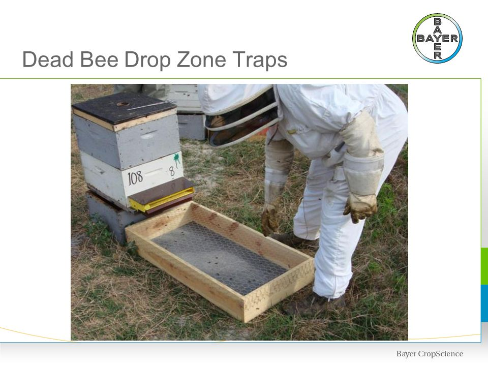 Sentinel Hives Program in Corn Growing Areas