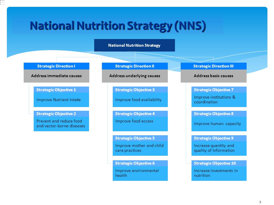 National Nutrition Strategy (NNS) National Nutrition Strategy