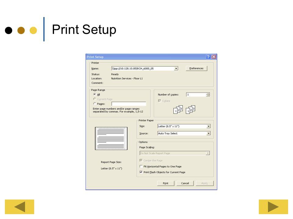 Print Setup