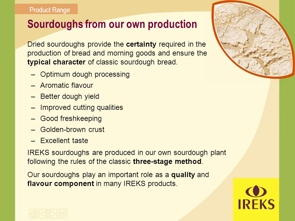 Sourdoughs from our own production