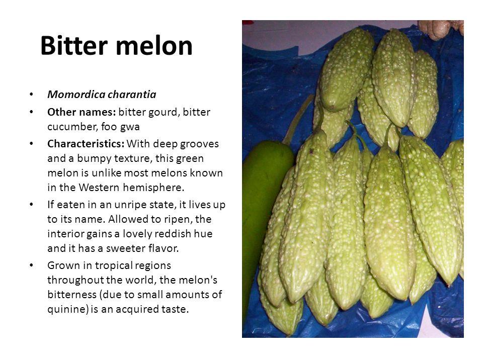 Bitter melon Momordica charantia