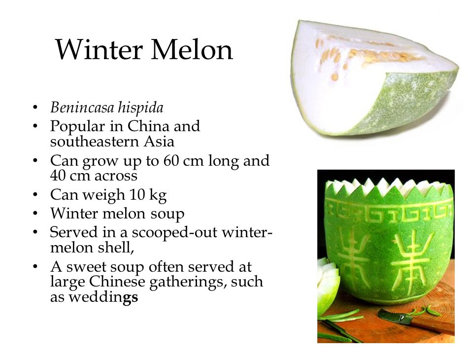 Winter Melon Benincasa hispida Popular in China and southeastern Asia
