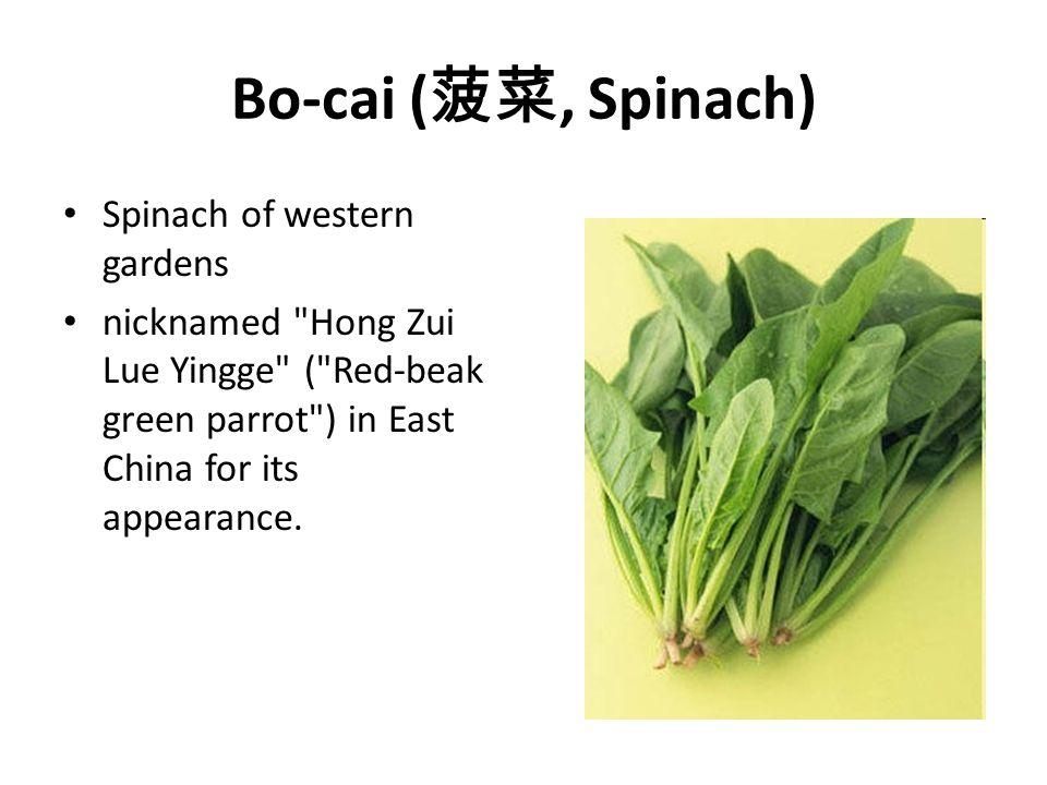 Bo-cai (菠菜, Spinach) Spinach of western gardens
