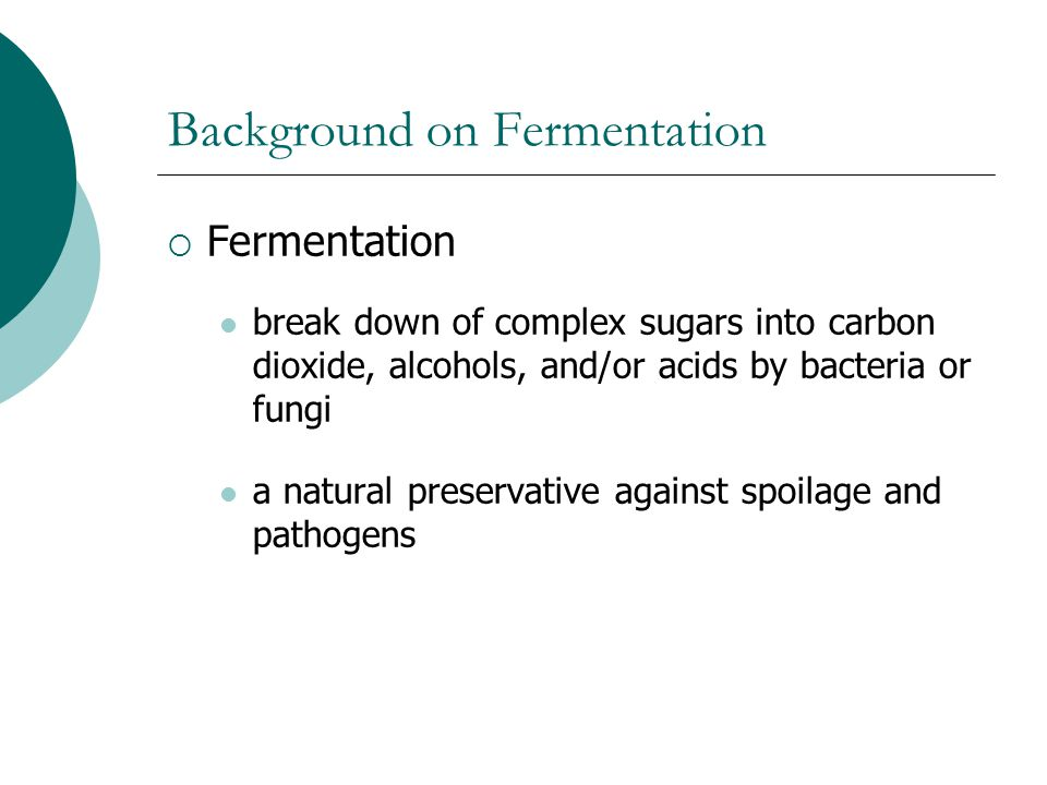 Background on Fermentation