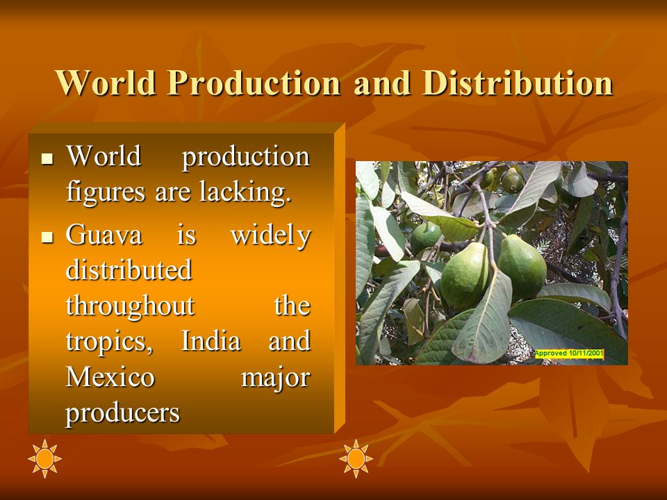 World Production and Distribution