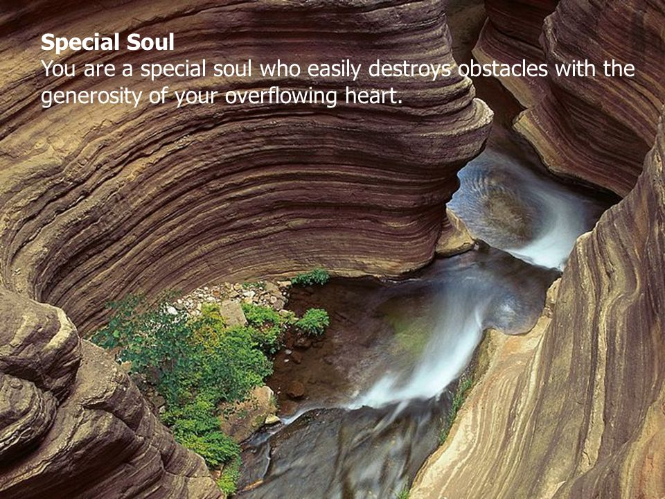 Special Soul You are a special soul who easily destroys obstacles with the generosity of your overflowing heart.