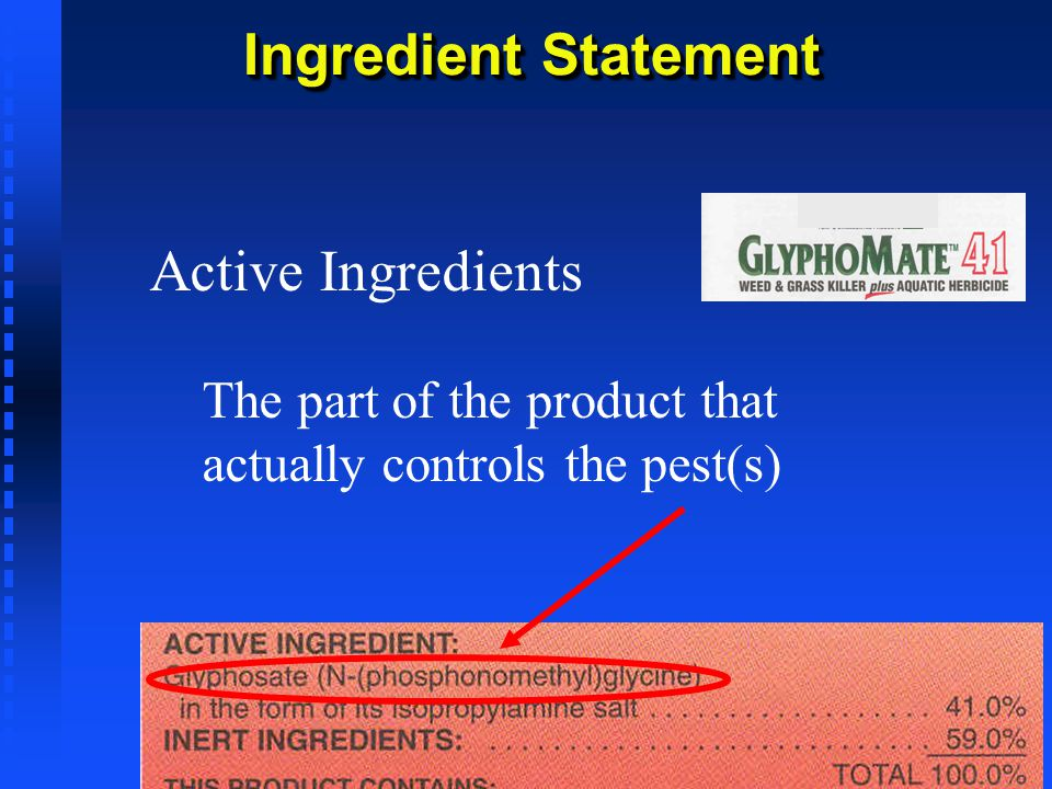 Ingredient Statement Active Ingredients