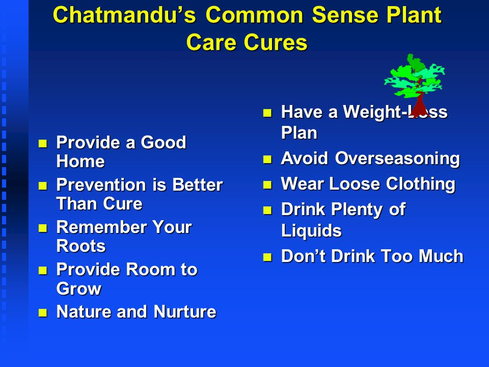 Chatmandu's Common Sense Plant Care Cures