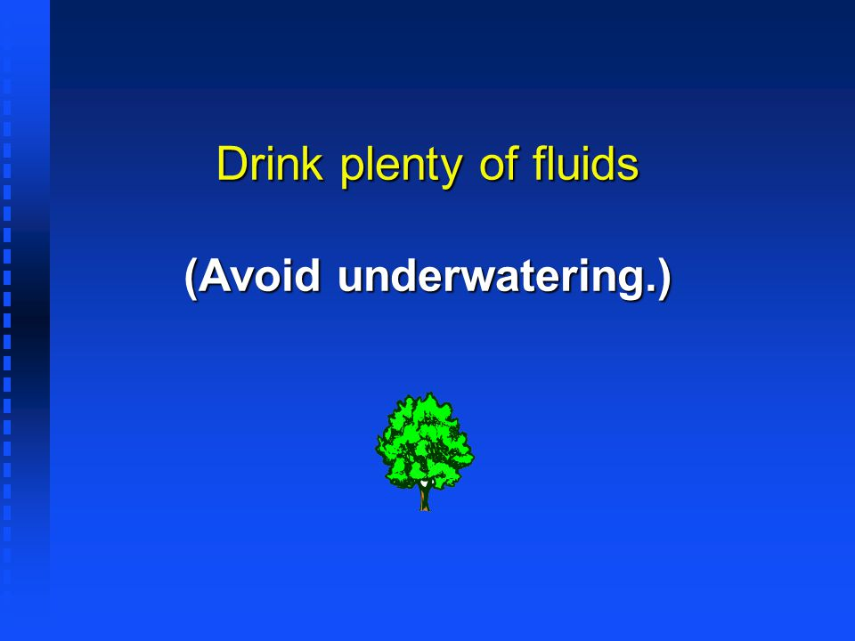 Drink plenty of fluids (Avoid underwatering.)