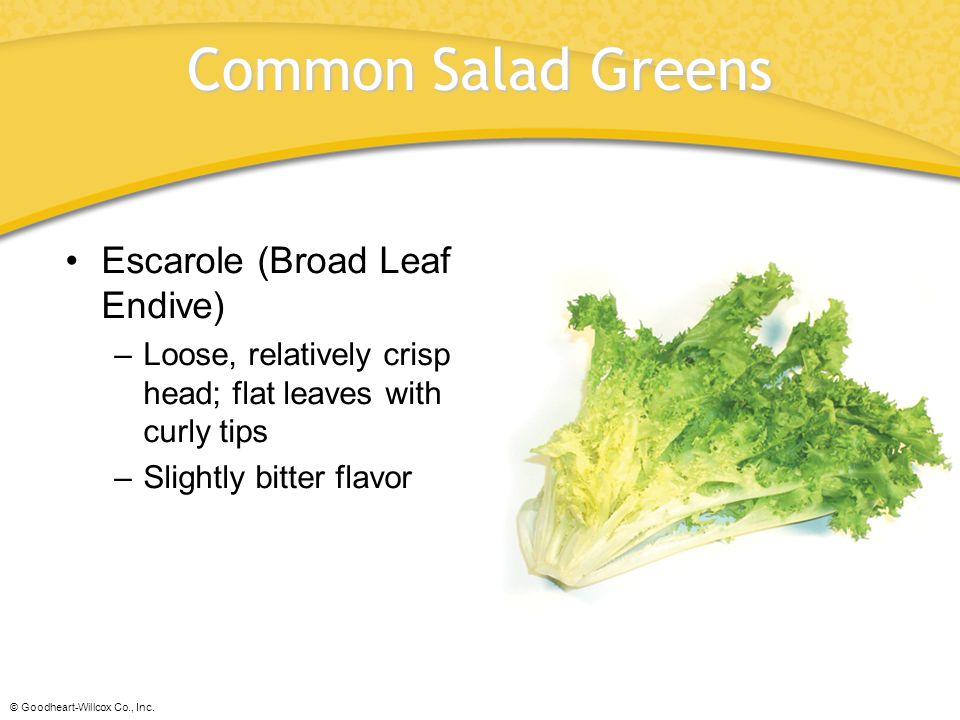 Common Salad Greens Escarole (Broad Leaf Endive)