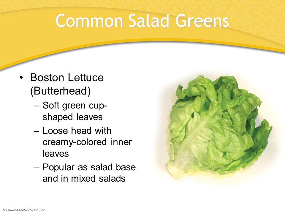 Common Salad Greens Boston Lettuce (Butterhead)