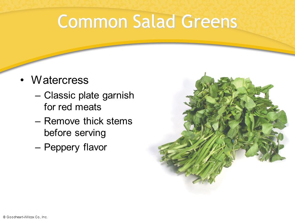 Common Salad Greens Watercress Classic plate garnish for red meats
