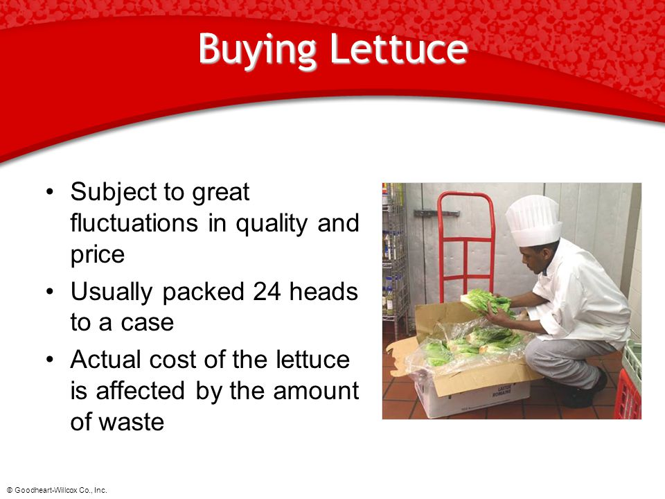 Buying Lettuce Subject to great fluctuations in quality and price
